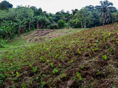 Models For Farming Communities Facing Changing Climate